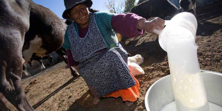 Foto: Mercados & Regiones