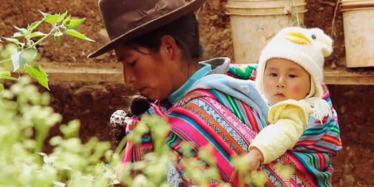 FOTO: Asociación Madre Coraje