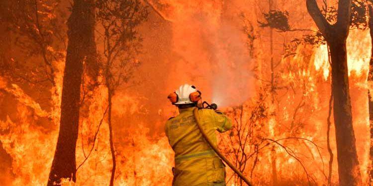 Diez muertos y altas temperaturas se reporta por incendios en Australia (AFP)