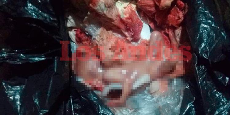 Dos fetos fueron hallados al interior de mercado.