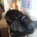 Presunto delincuentes murió en el centro de salud de la Rinconada.