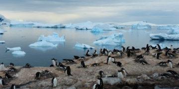 Se espera fenómenos meteorológicos  extremos en 2020 (Foto: Calatunya).