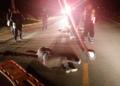 Motociclista murió tras ser arrollado por un vehículo.