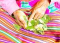 Ancestral. Consideran que la hoja de coca es suplemento y complemento de la salud y la alimentación de los puneños.