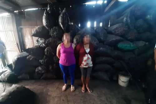 Incautaron un promedio de 10 toneladas de carbón vegetal ilegal.