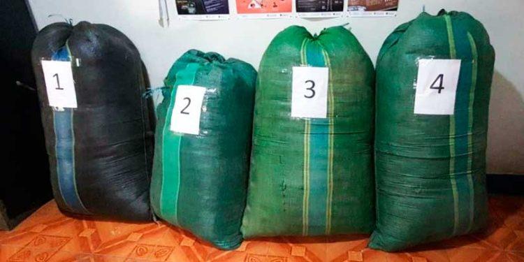 INCAUTAN. 4 sacos de hoja de coca triturada