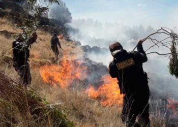 Serenos. Utilizaron ramas de los arboles para apagar las llamas de fuego.