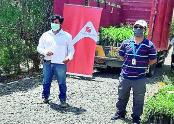 Cerro Verde entrega 500 plantones para reforestar distrito Samuel Pastor de Camaná
