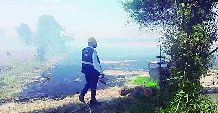 Detienen a dos malos agricultores por quemar la paja de arroz y contaminar el ambiente