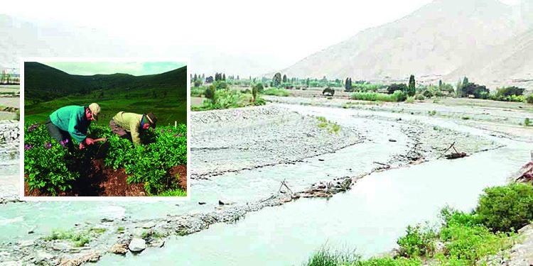 Agricultores se rebelan contra el Minagri y no participarán en elecciones de directivos