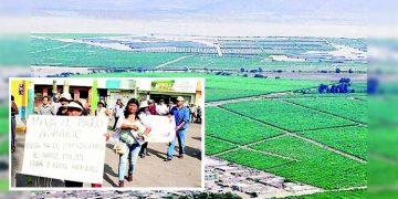 Proyecto de nueva Ley Agraria que evalúa el Ejecutivo afectaría a Majes-Siguas II