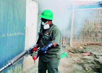 Caravelí: Intervienen mil 146 viviendas en Yauca para evitar propagación del dengue