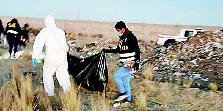 Encuentran cadáver de joven mutilado y perros comían sus restos en Cerro Colorado