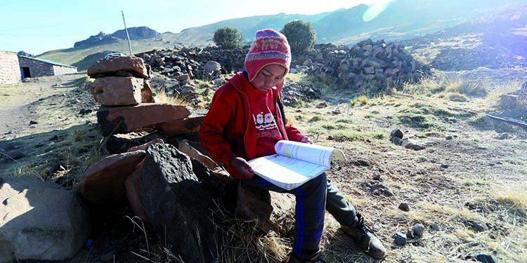 Más de 24 mil escolares no reciben clases remotas en la región Arequipa
