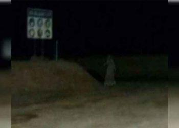 Captan fantasma gritando en las afueras de la empresa Cori Puno del distrito