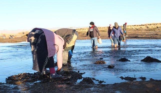 Tradición: pobladores buscaron piedras en forma de moneda en el río Unocolla