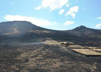 Incendio en Itapalluni causó la muerte de borregos y afectó 2 mil hectáreas de pastizales