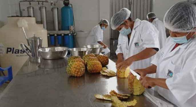 Entregan equipamiento para procesar frutas a productores de San Gabán