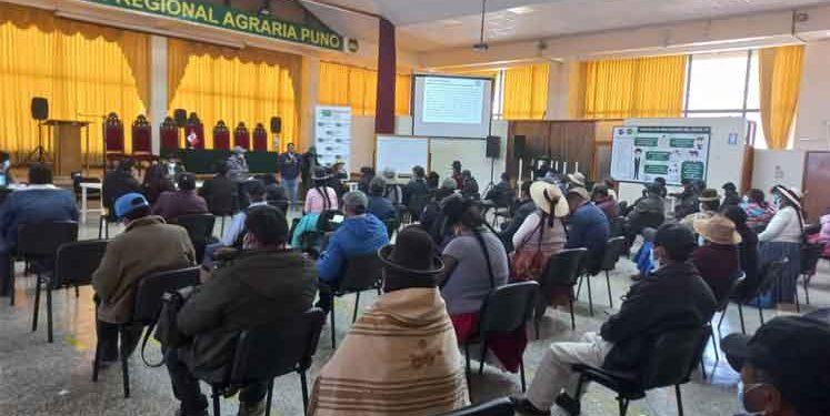 En diciembre prevén elecciones para elegir presidente de Conveagro Puno