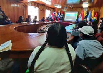 Puno: Titulares de pliego se ausentan de reunión multisectorial para descontaminar el lago Titicaca
