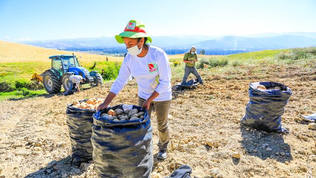 Gobierno peruano: La segunda reforma agraria busca el desarrollo rural no la expropiación